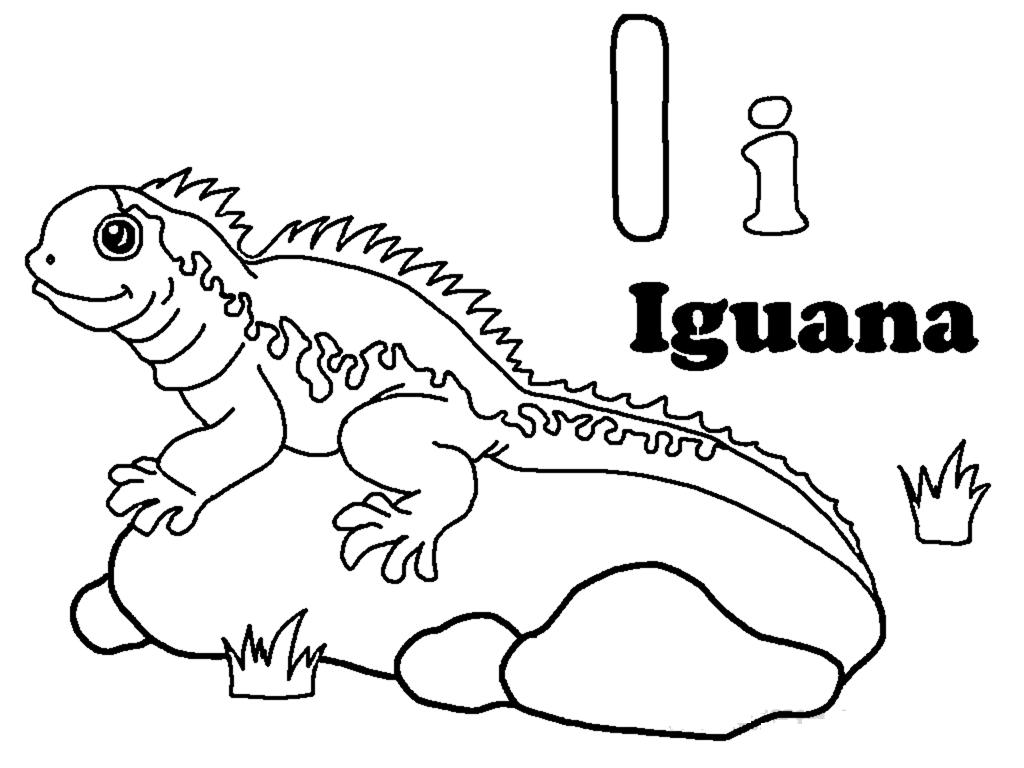 free printable iguana for kids