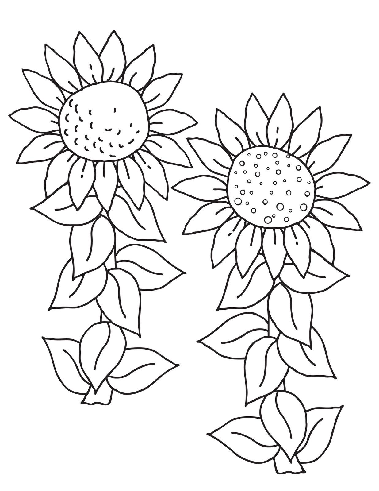 printable sunflower for kids