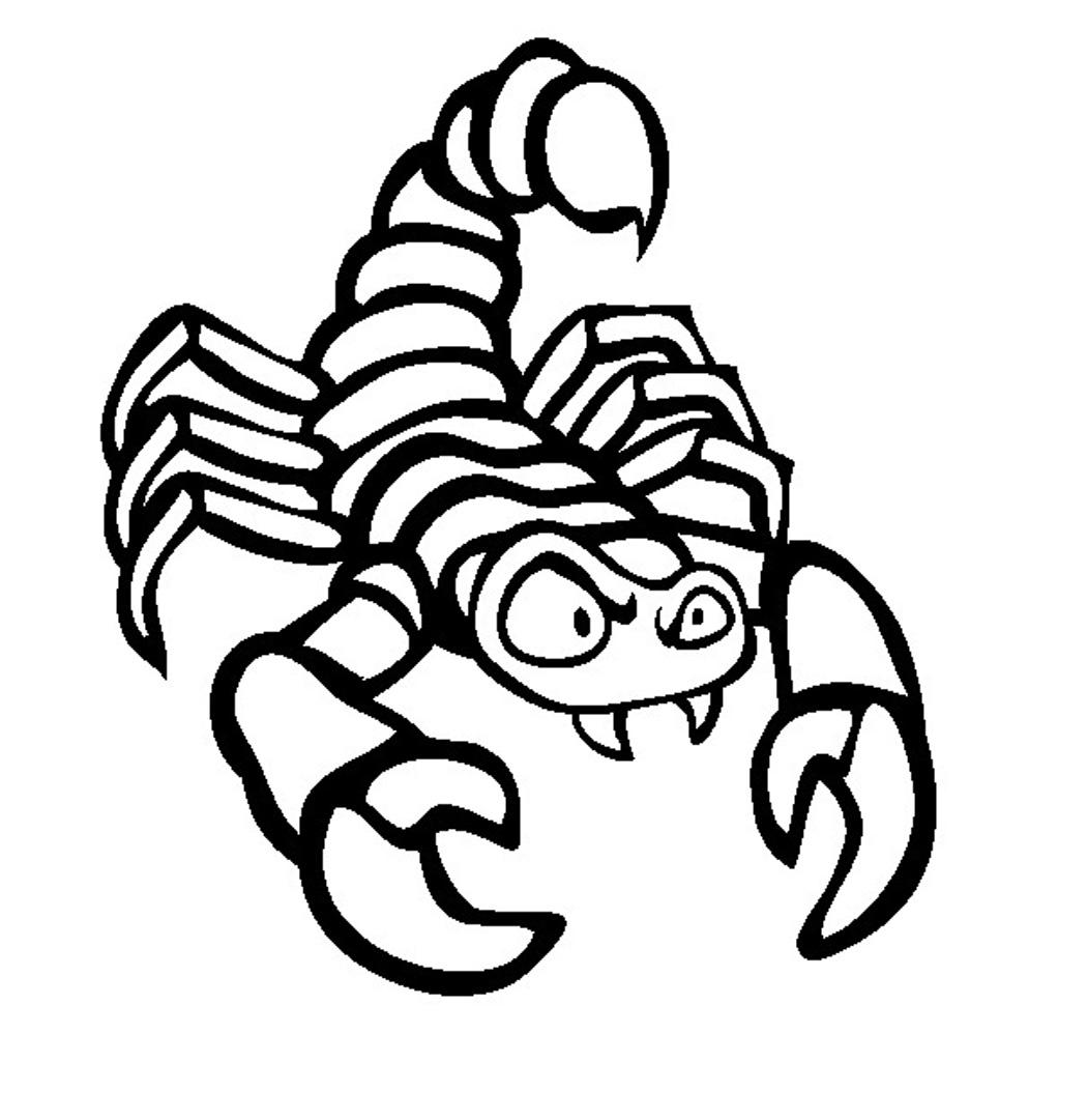 Скорпионы картинки для детей