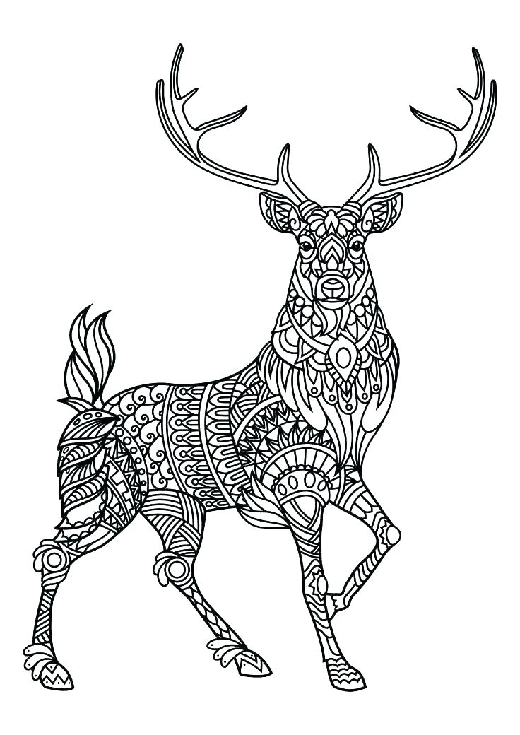 Animal Mandala Coloring Pages - Best Coloring Pages For Kids | coloring pages printable animals