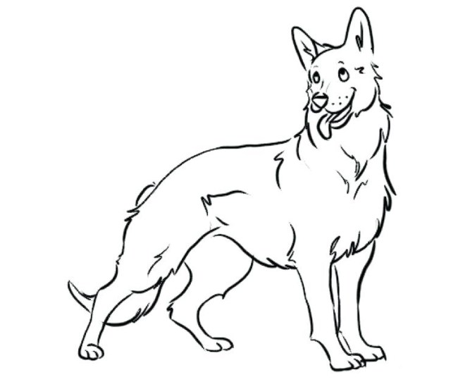 German Shepherd Coloring Pages Best Coloring Pages For Kids