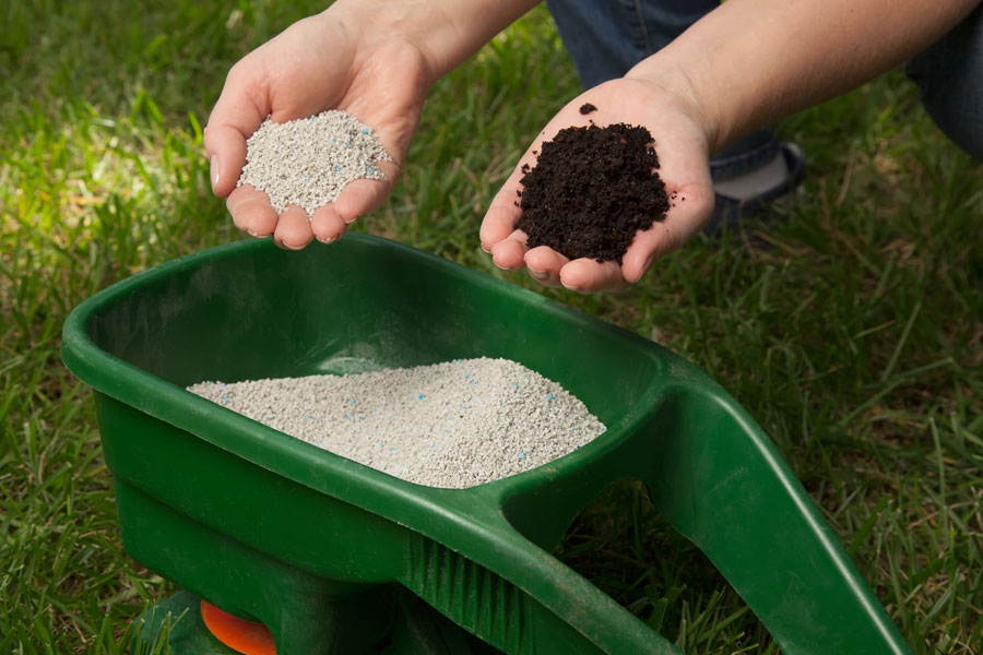 Best Lawn Fertilizers Reviews