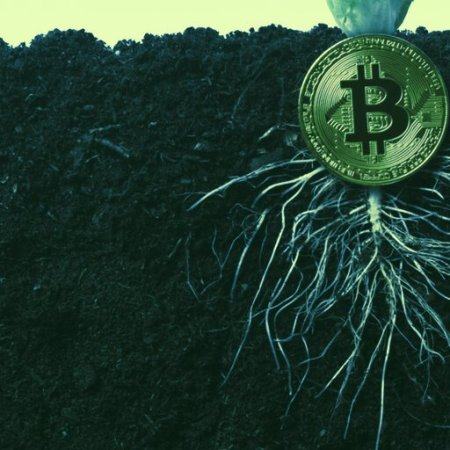 Bitcoin Taproot upgrade: What are the new changes