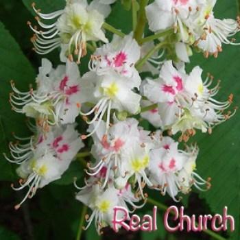 Real Church DSCN3481