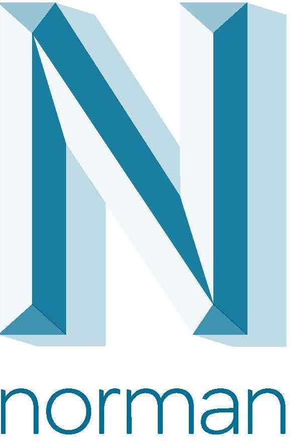 bedrijfs logo van norman software