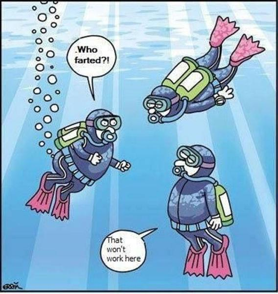 Image result for joke caricatures