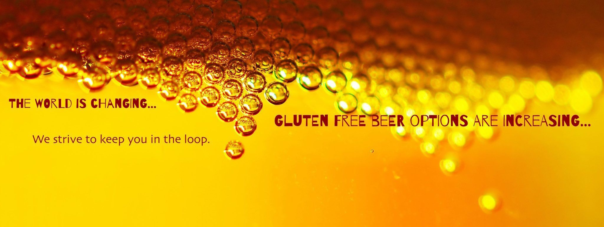 best gluten free beers reviews gluten free beer brands 2016