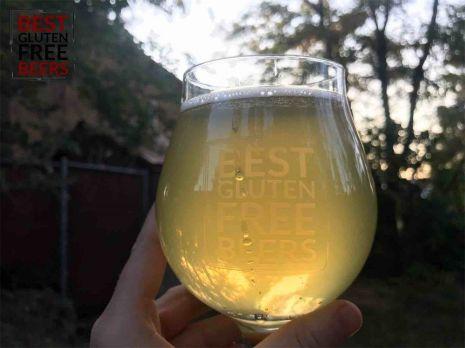 Moonshrimp Brewing Hazy White IPA gluten free beer review
