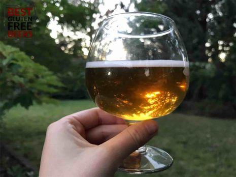 Daura Damm gluten reduced gluten free beer