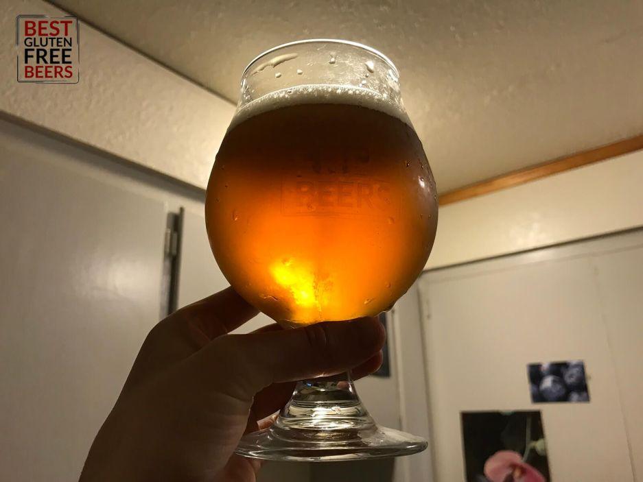 dedicated gluten free brewery ipa