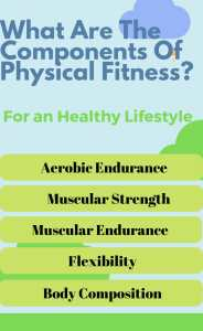 what are the component of physical fitness