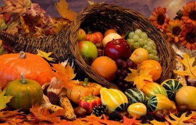 Autumn Orange Food Delight