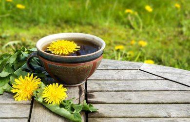 dandelion root tea photo