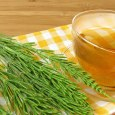 horsetail tea benefits