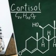 Reduce Cortisol Levels Naturally