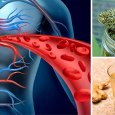 Stimulate Blood Flow Naturally