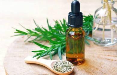 Health Benefits of Rosemary Essential Oil