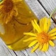 Health Benefits of Arnica