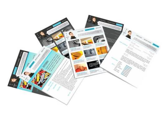 Portfolio Interactive Resume Many Preview