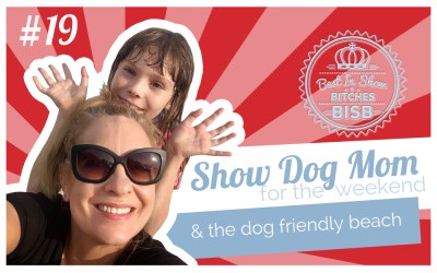 Show Dog Mom and The Dog Beach – Episode NINETEEN