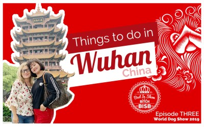 Things to do in Wuhan, China – Episode THREE