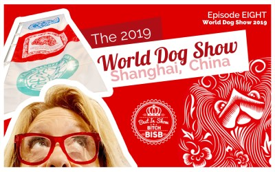 The World Dog Show – Episode EIGHT