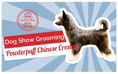 Dog Show Grooming: How To Groom a Powderpuff Chinese Crested