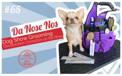Show Ring Tips and Tricks – Dog's Nose Discoloration