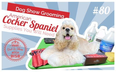 Dog Show Grooming: How to Groom an American Cocker Spaniel & The Supplies You Need
