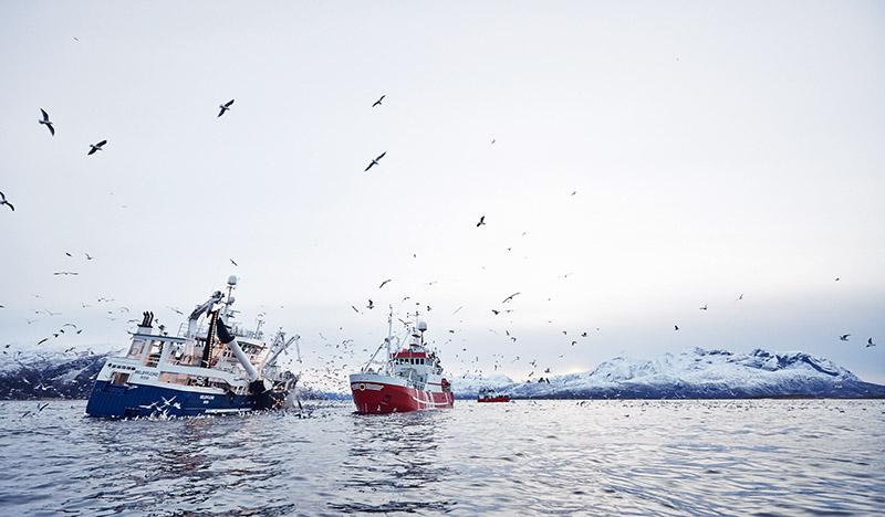 bateaux de peches norvegiens