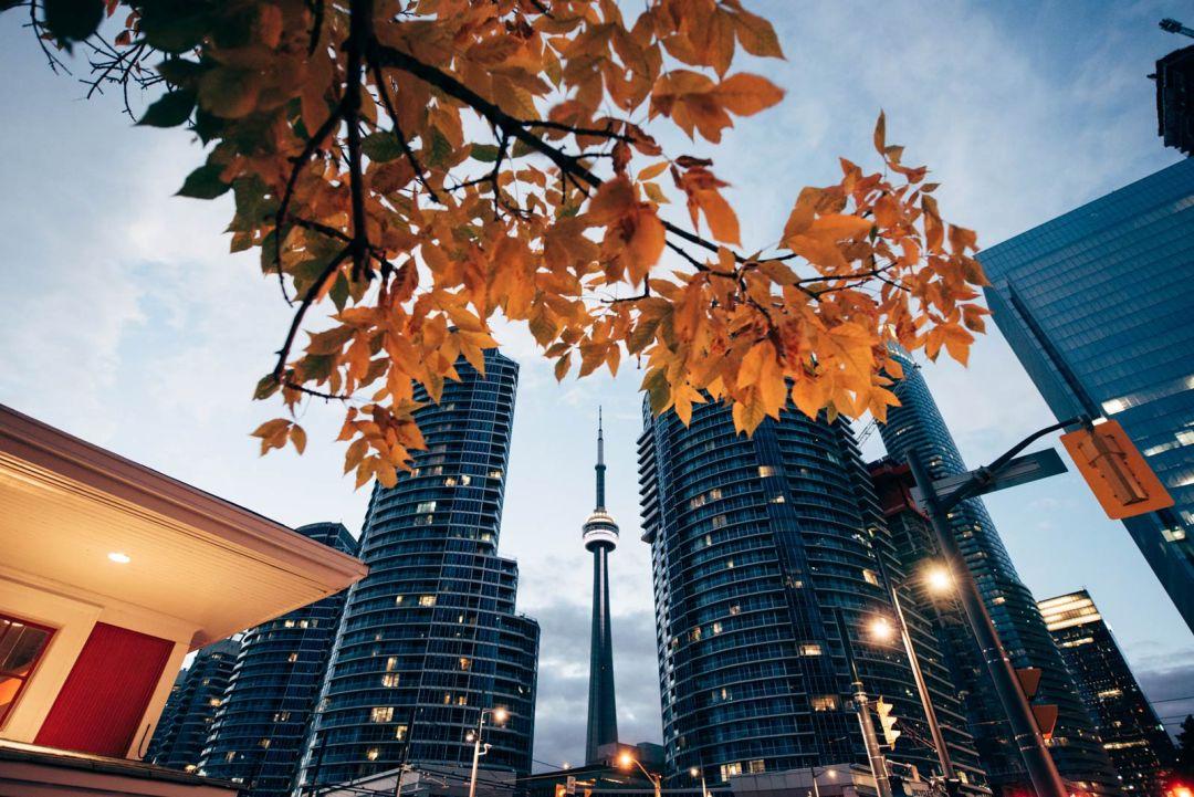 CN tower toronto prix