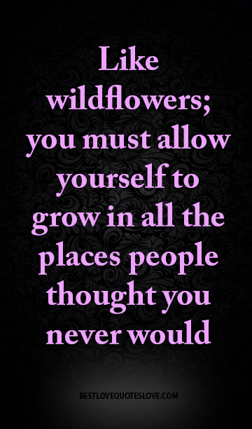 Like wildflowers; you must allow yourself to grow in all the places people thought you never would