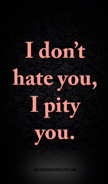 I don't hate you, I pity you.