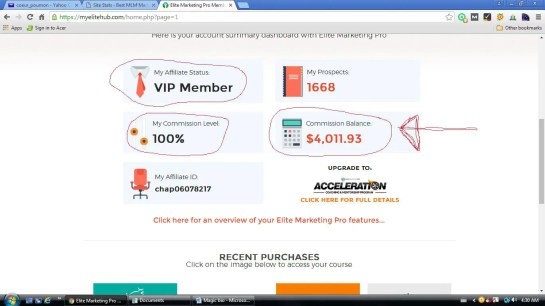 Online business opportunities income proof