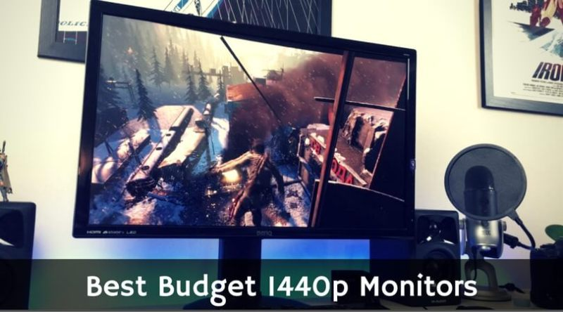 Best Budget 1440p Monitors