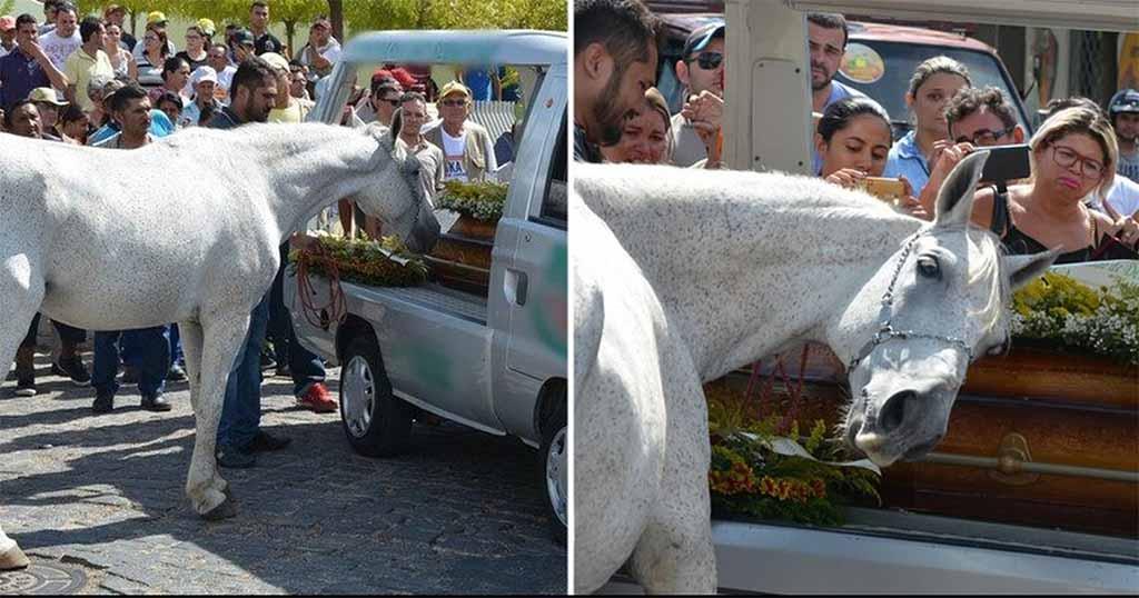 άλογο κηδεία