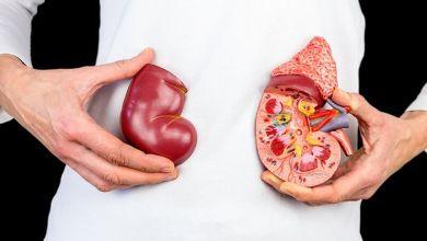νεφρά γυμναστική