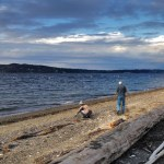 <i>Podcast: What's Up Bainbridge:</i><br> Bainbridge Island Beach Cleanup Saturday, September 9