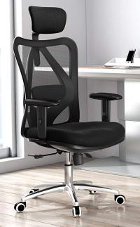 Sihoo Ergonomics Office Chair Review