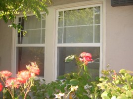 Walnut Creek Home Windows