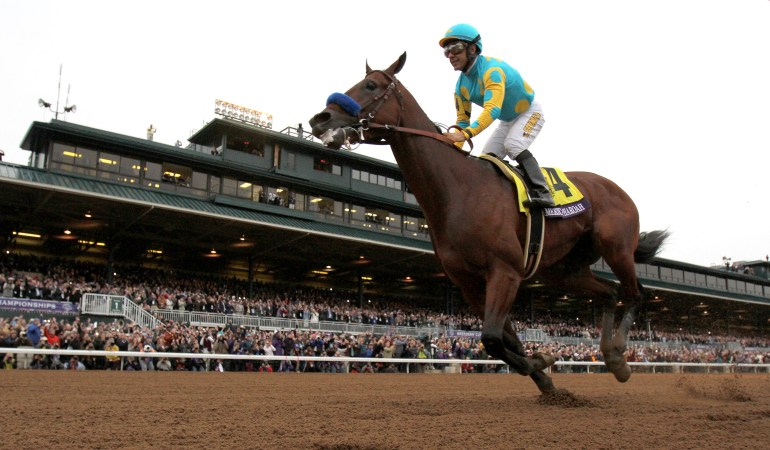 Triple Crown Winner American Pharaoh ridden by Jockey Victor Espinoza passes the grandstand after winning the Breeders' Cup Classic Saturday afternoon October 31, 2015, at the Keeneland Race Track in Lexington, KY during the second day of the 2015 Breeders' Cup. Triple Crown Winner American Pharoah who was broken by J.B. McKathan of Marion County, ran his last race, the Breeders' Cup Classic, before going out to stud. (Doug Engle/Ocala Star-Banner)2015.