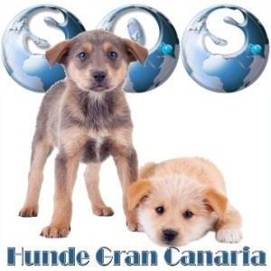 sos_gran_canaria_hunde_logo