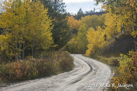 Mosquito Creek Road Oct 3