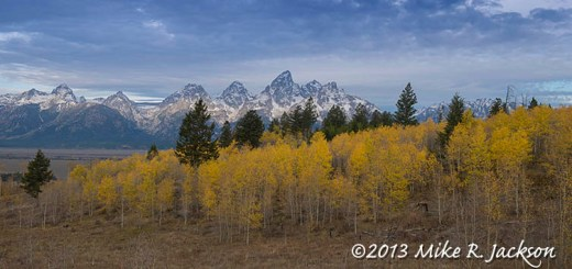 Shadow Mtn Aspens Oct 8