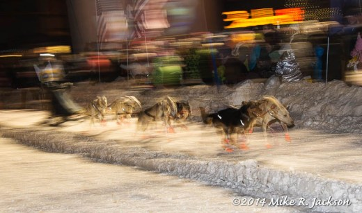 Web Sled Dog Race Blur Jan31