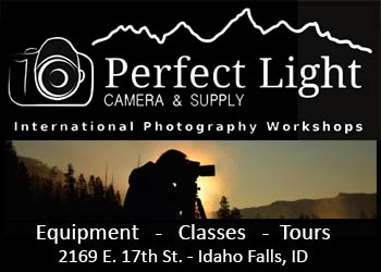 Perfect Light Camera & Supply