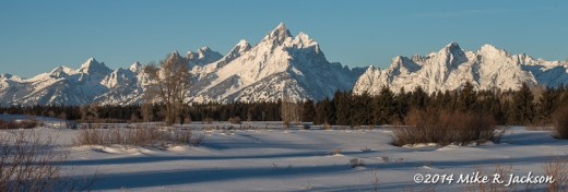Web Snow Covered Tetons