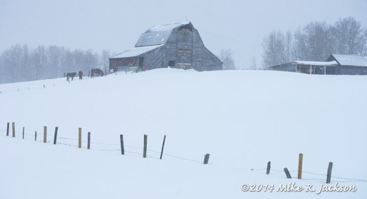 Web Snowy Barn Feb8