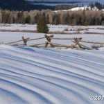 Web Buckrail Fence Mar8