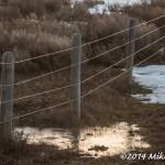 Web_Fence_April19